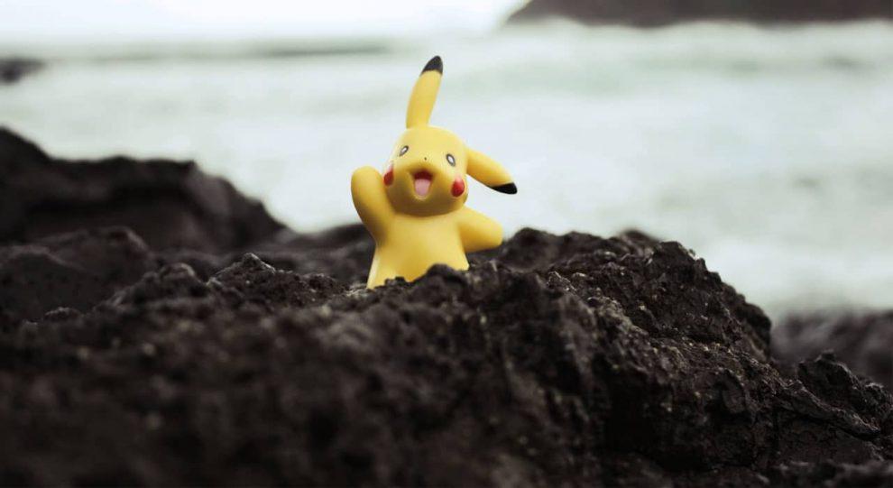 muncie-pokemon-shelter-pets
