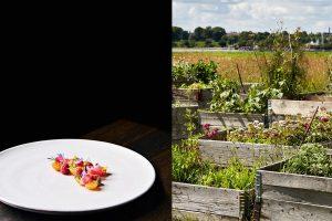 amass-sustainable-organic-restaurant-kitchen-education-program