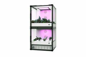CityCrop-vertical-hydroponics-farming