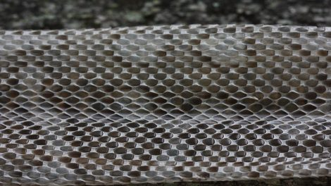 Superhydrophobic_material